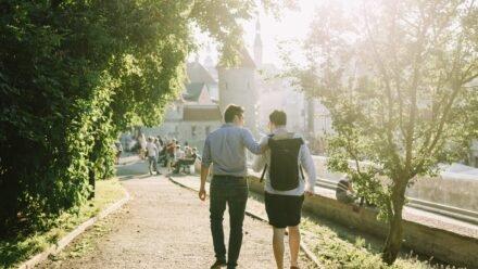 Tallinn Summer School (virtual edition)